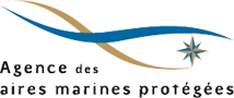 Logo AAMP Agence